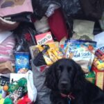 Donations to Three Counties Dog Rescue