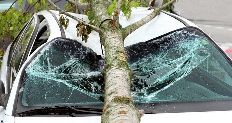 Client Interview: Passenger Car Crash